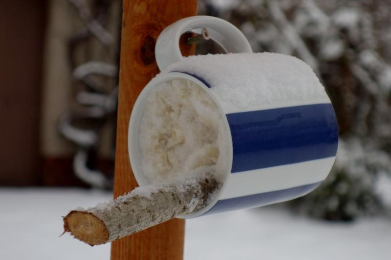 Jednoduché tukové krmítko vyrobené doma ze zavěšeného hrnečku